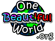 One Beautiful World